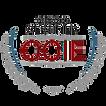 CCIE-DATACENTER.png