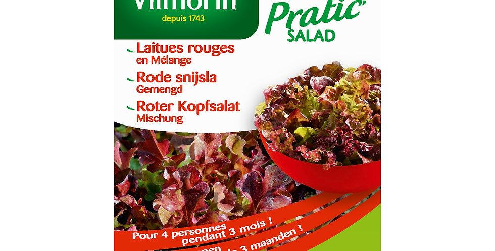 Rode snijsla gemengd (Pratic salad)