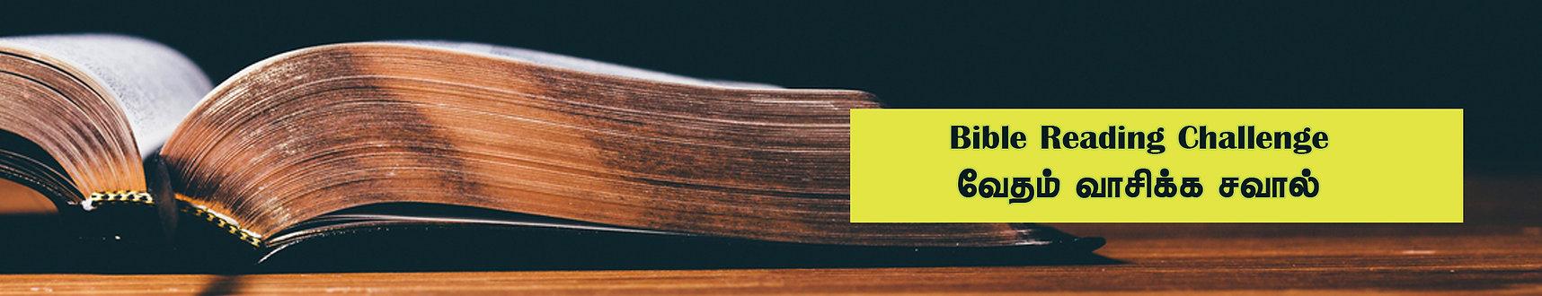 bible challenge.jpg