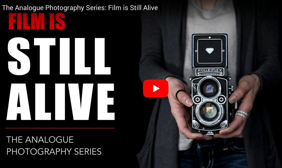36-Frames analoge Fotografie   Videos