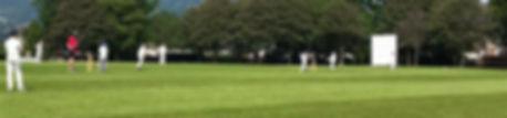 Croesy Cricket