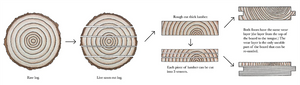 Hardwood-Design-Company-wide-plank-hardwood-flooring-wooden-flooring-engineered-vs-solid-hardwood-floors