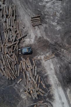 Hardwood-Design-Company-wide-plank-hardwood-flooring-wooden-flooring-texas-post-oak-hardwood-flooring-oakflooring-salvaged-wood-flooring-manufactuerers-post-oak-logs
