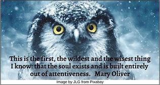 Owl HRJ.jpg