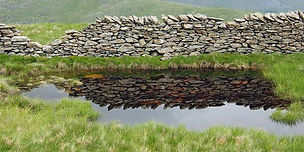 Stone wall reflected in a pond in a meadow.