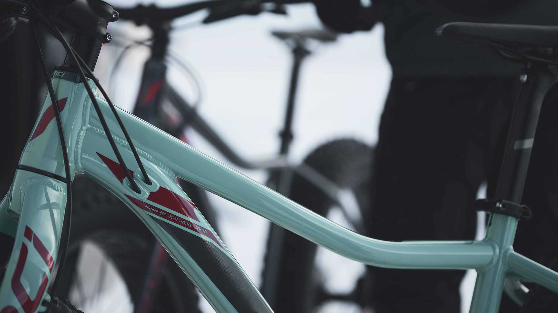 2020 DEVINCI MINUS FAT BIKE
