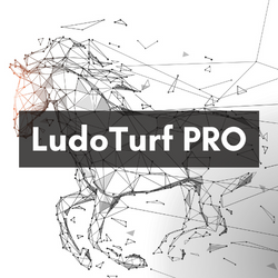LudoTurf1 (2)