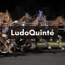 LudoTurf1 (1)