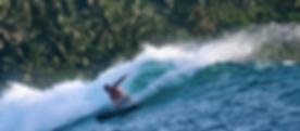 Rebel Surfcamps.png