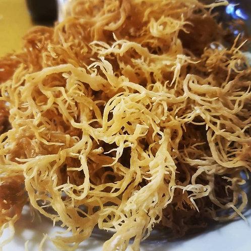 Raw Golden Sea Moss