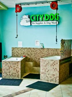 City Dog POI-17.jpg