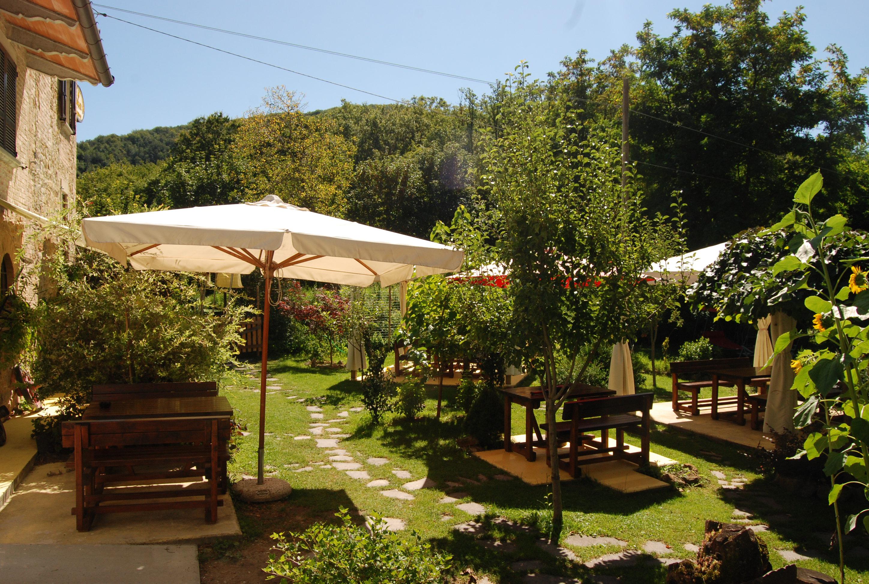 visione del giardino