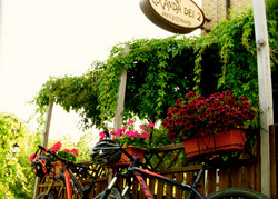 Mountain Bike alla Locanda