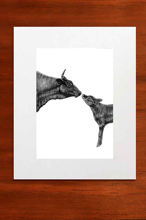 Mother and Calf Fine Art Print Mounted