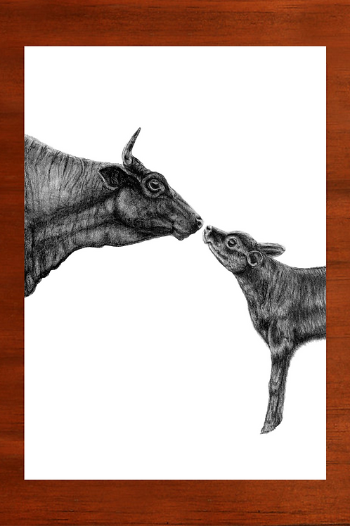 Mother and Calf Fine Art Print