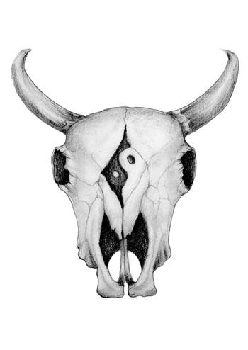Farm Animals cowskull.jpg