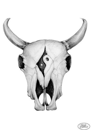 Cow Skull