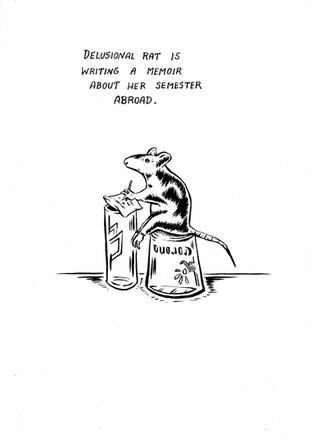 Delusional Rat//Memoir