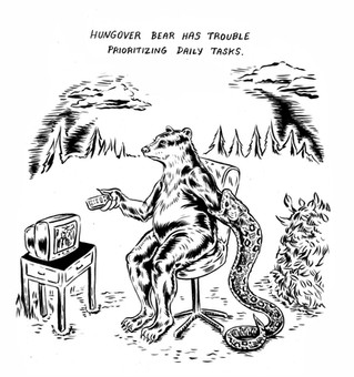 Hungover Bear//Priorities
