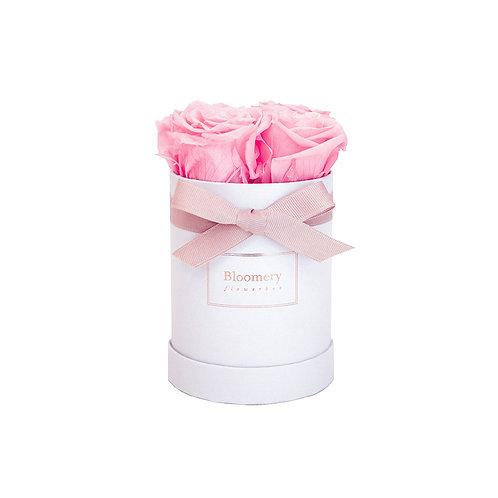 BRIDAL PINK Infinity Rosen in MIDI Flowerbox