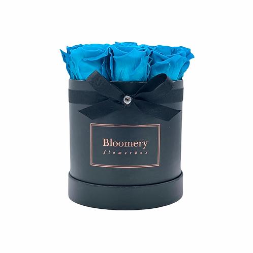 Glamour Flowerbox AQUAMARINE Medium