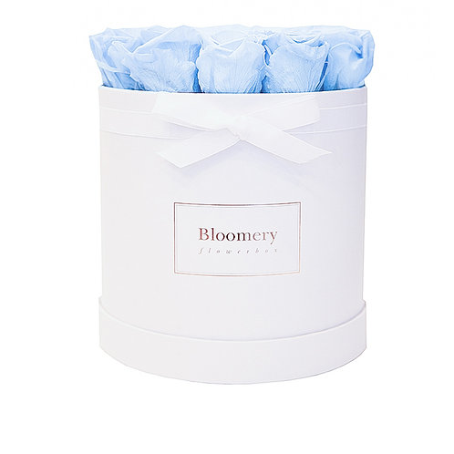 BABY BLUE Infinity Rosen in LARGE Flowerbox