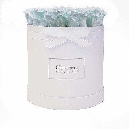 MINTY GREEN Infinity Rosen in LARGE Flowerbox