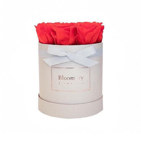 ORANGE FLAME Infinity Rosen in MEDIUM Flowerbox