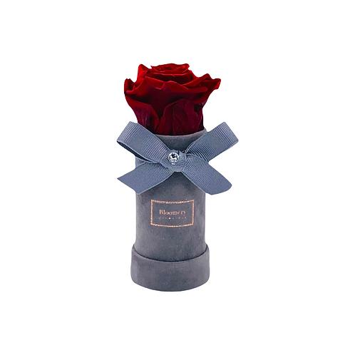 Glamour Flowerbox ROYAL RED Mini