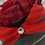 Thumbnail: Glamour  Flowerbox ROYAL RED Large
