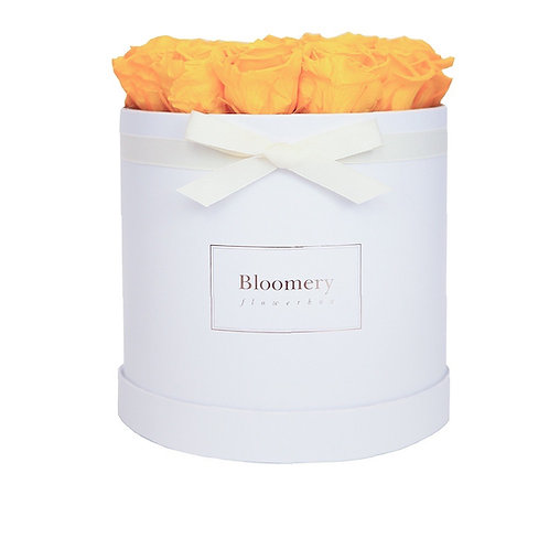 SUNNY YELLOW Infinity Rosen in LARGE Flowerbox