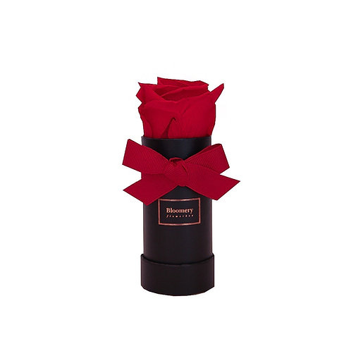 PASSION ROYAL RED Infinity Rosen in MINI Flowerbox