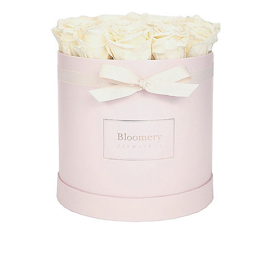 CHAMPAGNE Infinity Rosen in LARGE Flowerbox