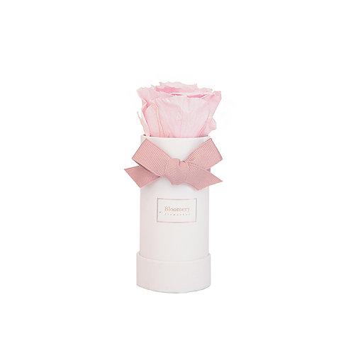 BRIDAL PINK Infinity Rosen in MINI Flowerbox
