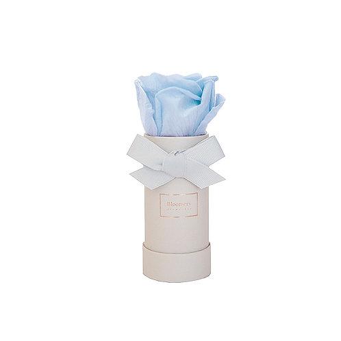 BABY BLUE Infinity Rosen in MINI Flowerbox