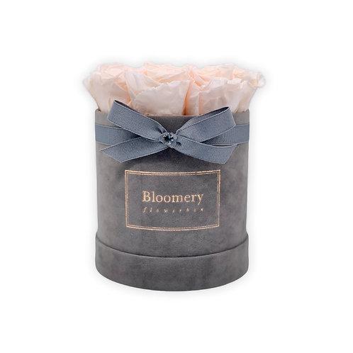 Glamour Flowerbox NUDE Medium