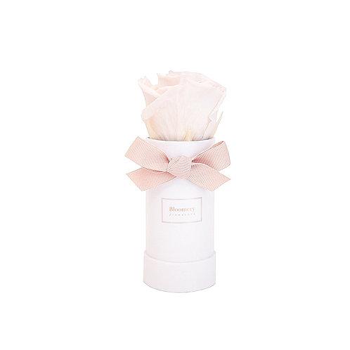 NUDE Infinity Rosen in MINI Flowerbox