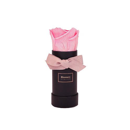 BABY PINK Infinity Rosen in MINI Flowerbox