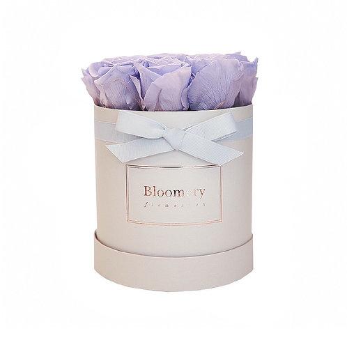 LAVENDEL BLUE Infinity Rosen in MEDIUM Flowerbox