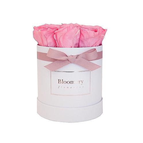 BABY PINK Infinity Rosen in MEDIUM Flowerbox