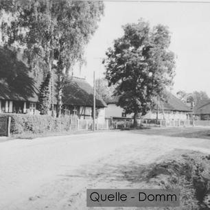 01-N-DOM-14D Alwine-Wuthenow-Ring