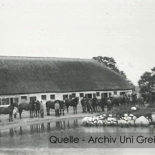 08-W-UNI-ARCH-06-Pferde-vor-Stall