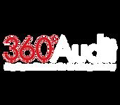 360 audit logo.png