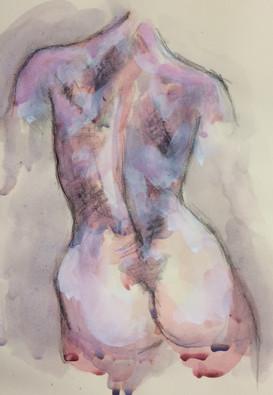 female torso back.jpeg