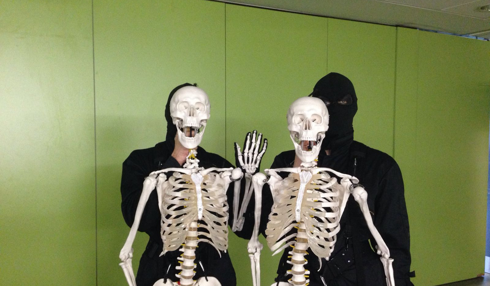 Skeletons up in action