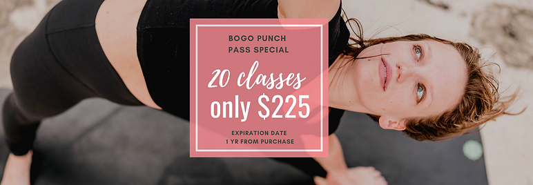 BOGO Special - 20 class passes for $225.png