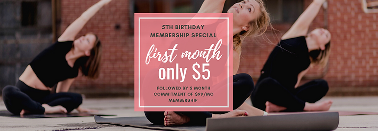 Birthday Special $5+5 month contract.png