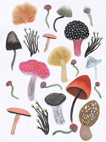 mushroom fest_Yanuary Navarro_2020