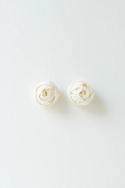 芍薬のつぼみ・白