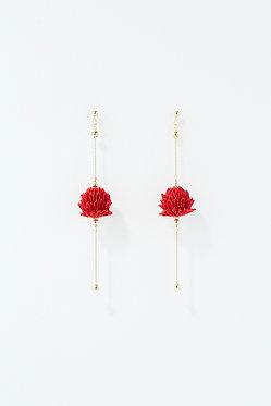 紅花とシロツメクサ